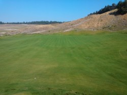The new 7th green at Chamber's Bay.  Not open for play yet, but looking pretty darn nice :)