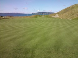 The new green on #1 at Chamber's Bay