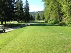 Snoqualmie Falls 1st Hole