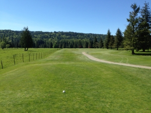 Snoqualmie Falls Golf Course 2